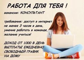 интернет-консультант